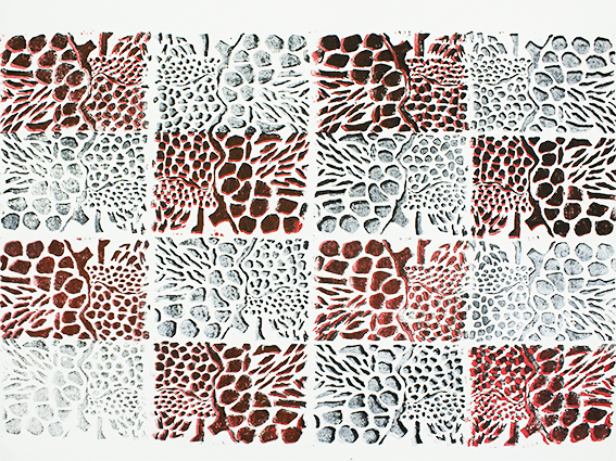 View Image Details 16 Mater Cells 1 B&W&Red 1