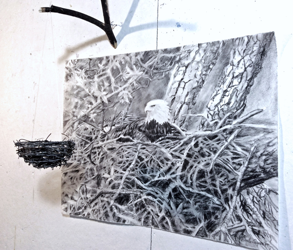 "View Image Details Occuppied and Abandoned Nest, Mixed media, Charcoal on paper, barbed wire, iron wire, fishing line, found wood H 36"" x W 42"""