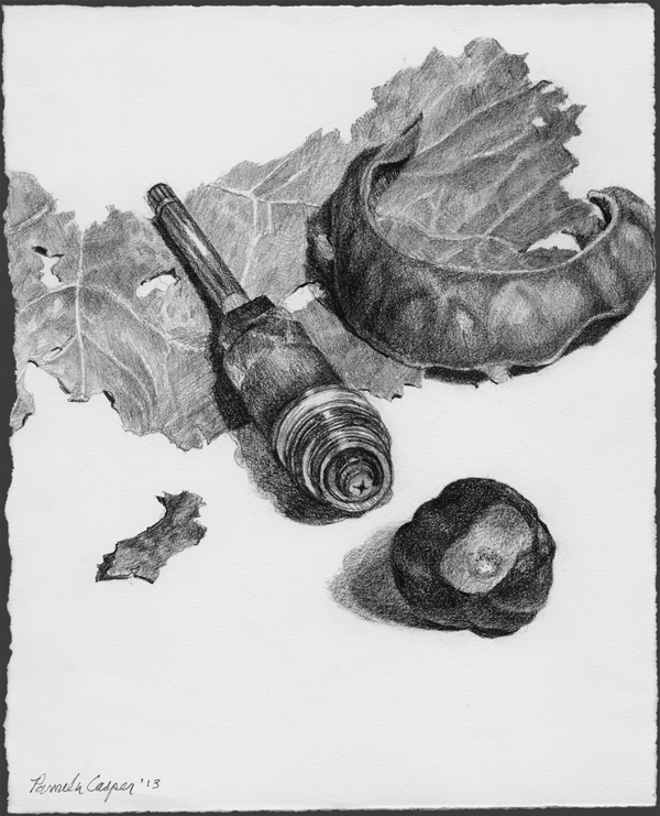 "View Image Details Plumbing and Pods, Pencil on Paper H 9"" x W7"""